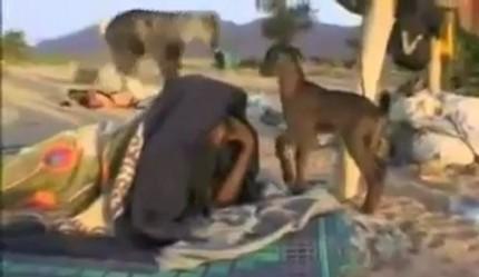 Mali : découvrez les vrais terroristes