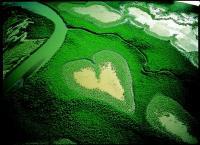 Yann Arthus-Bertrand et Google Earth