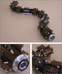 Le robot serpent